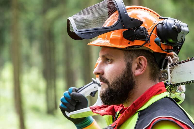 Praktikum im Wald