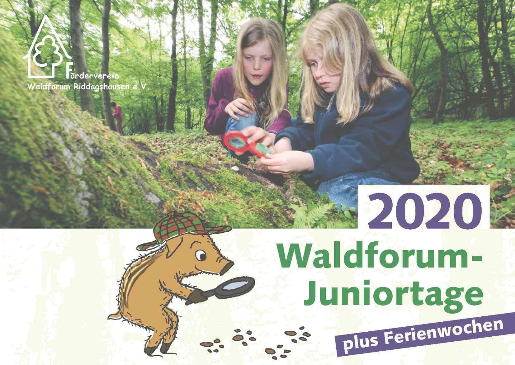 2020-waldforum-juniortage.web_seite_01
