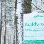 Waldeingangsschild im Schnee