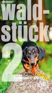 waldstueck-sommer-2021-cover