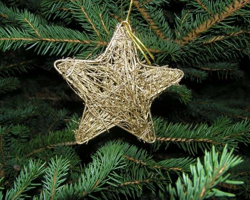 Weihnachtsbaumverkauf Salder